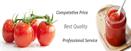 China Tomato Paste