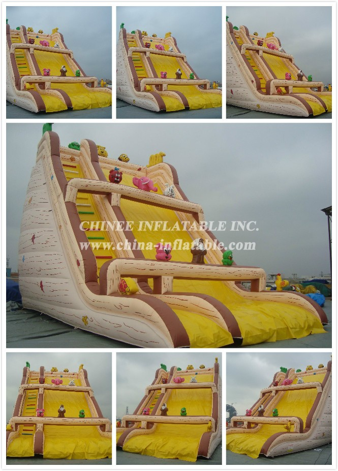 15 - Chinee Inflatable Inc.
