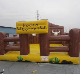 T11-665 Inflatable Sports