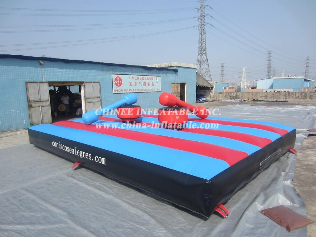 T11-695 Inflatable Sports