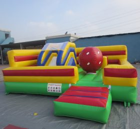 T2-296  giant inflatable
