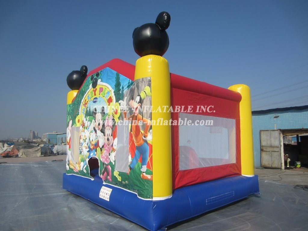 T2-527 inflatable bouncer