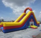 T8-107  Inflatable Slides