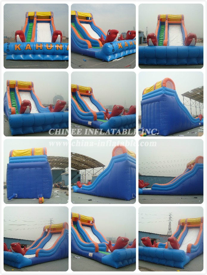 3245 - Chinee Inflatable Inc.