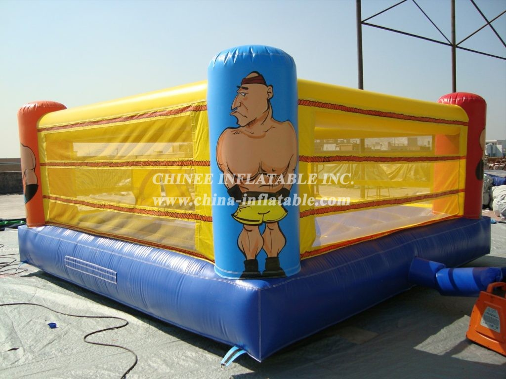 T11-1142 Inflatable Sports