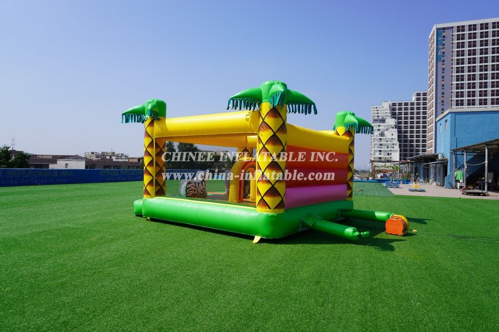 T2-2197 Inflatable zoo