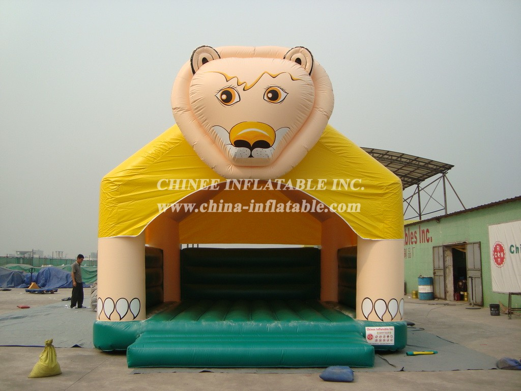 T2-307 inflatable bouncer