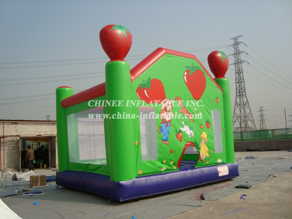 T2-2586 Inflatable Bouncers