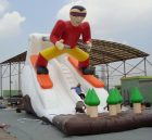 T8-158 Inflatable Slide
