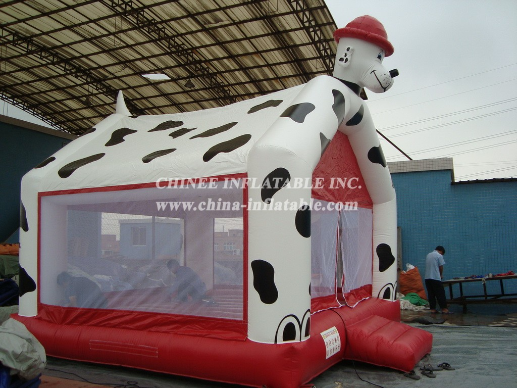 T2-794 inflatable bouncer