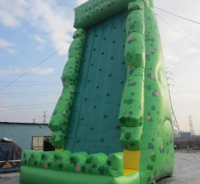 T11-239 Inflatable Sports
