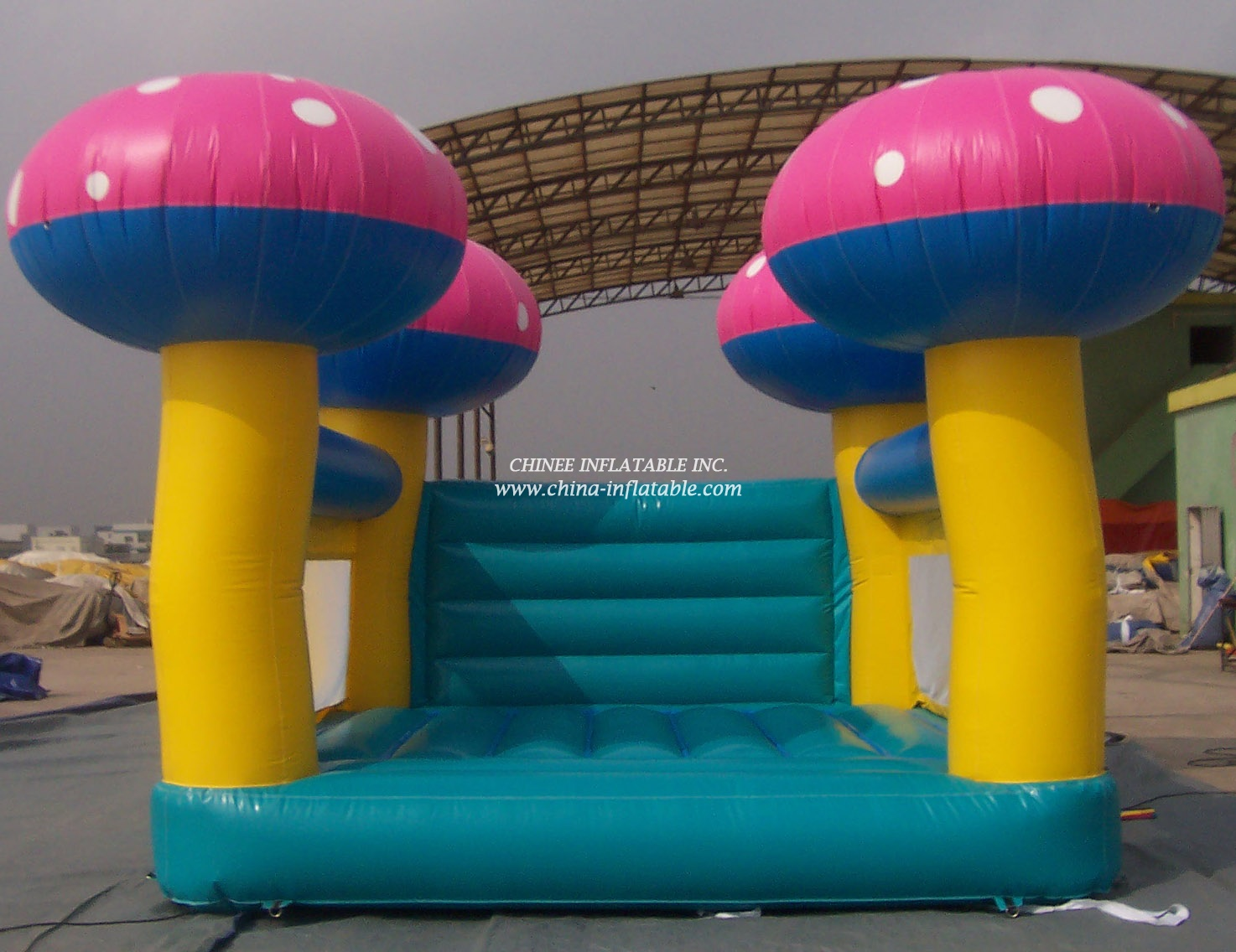 T1-142 inflatable bouncer
