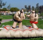 T11-125 Inflatable Sports