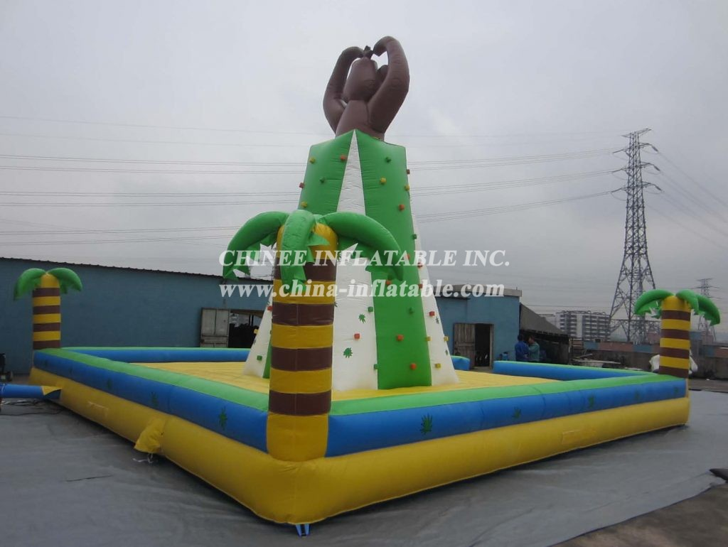 T11-272 Inflatable Sports