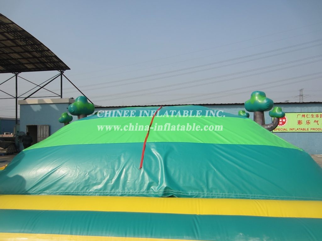 T11-389 Inflatable Sports