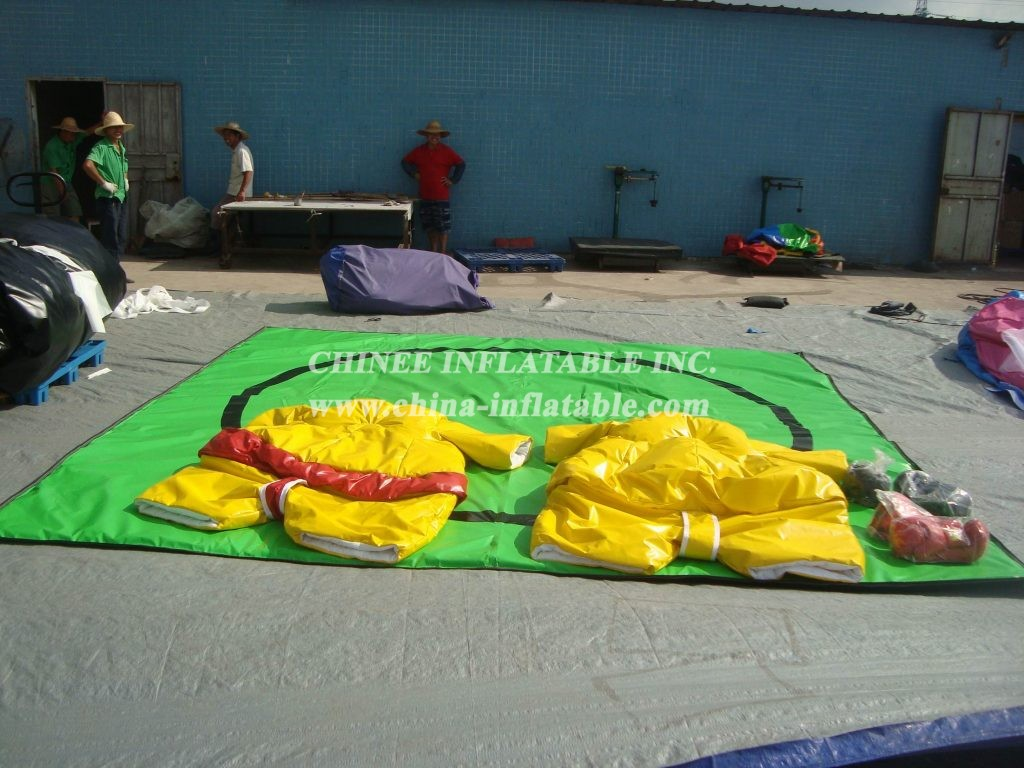 T11-569 Inflatable Sports