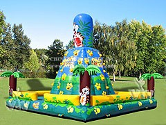 T11-573 Inflatable Sports