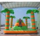 T11-993 Inflatable Sports