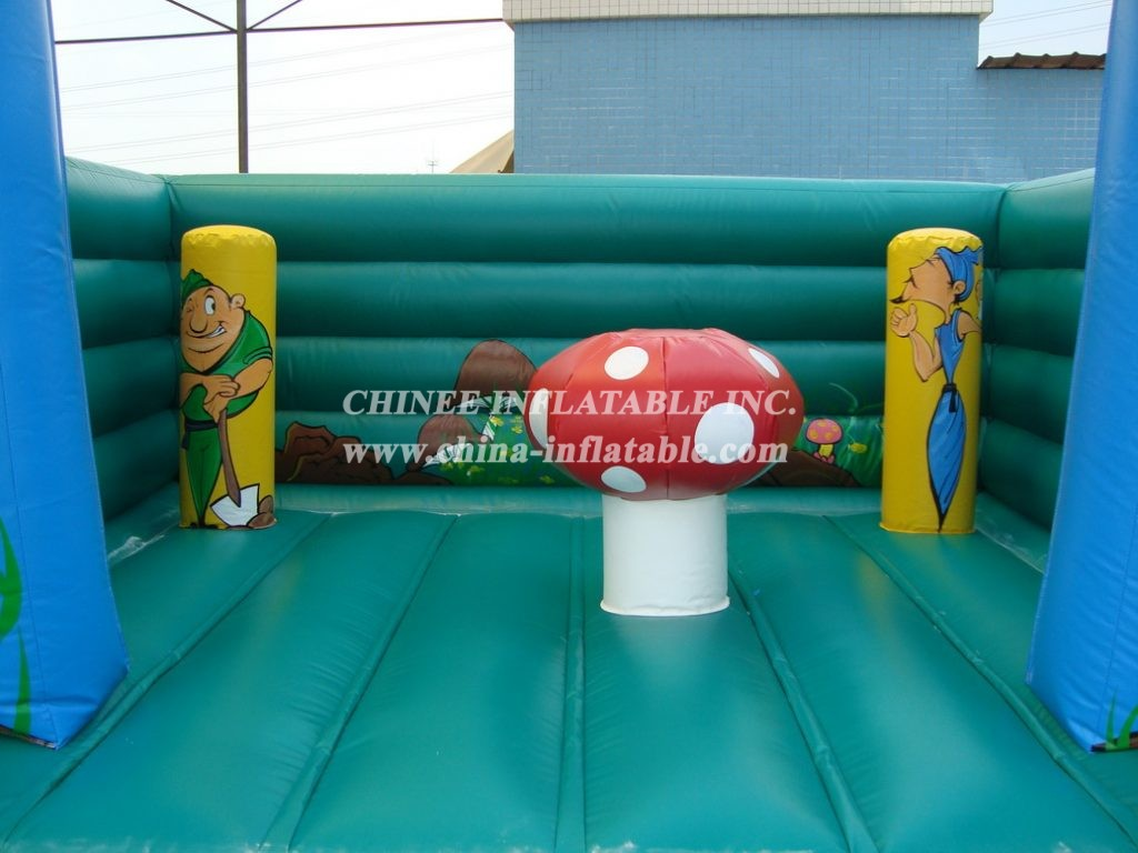 T2-191 inflatable bouncer