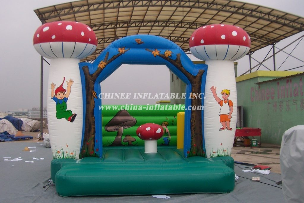T2-2464 Inflatable Bouncers