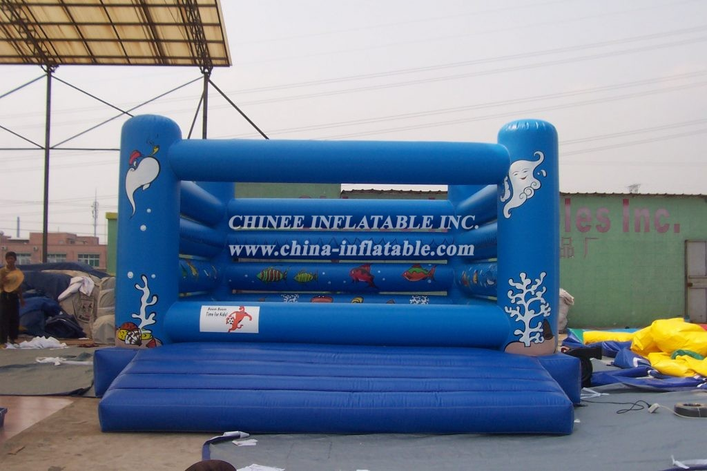 T2-353 inflatable Sea World