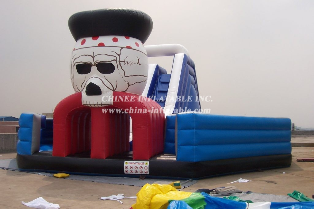 T6-207 giant inflatable