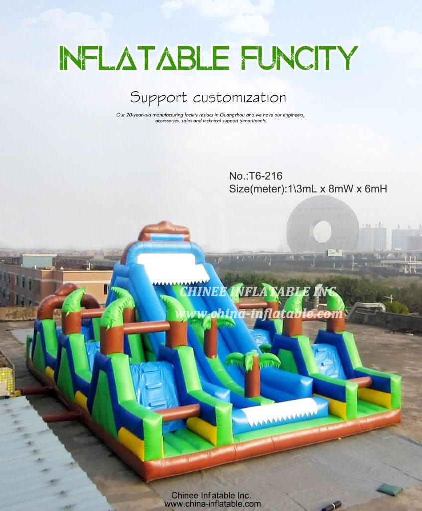 T6-215 - Chinee Inflatable Inc.
