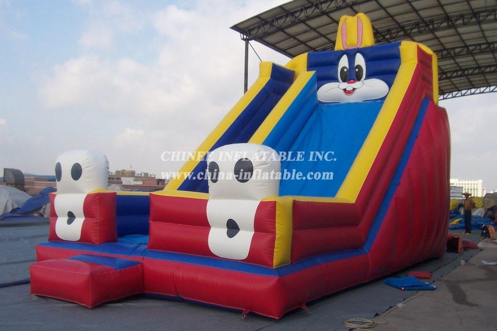 T8-108  Inflatable Slides
