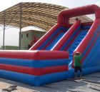 T8-109 Inflatable Slides
