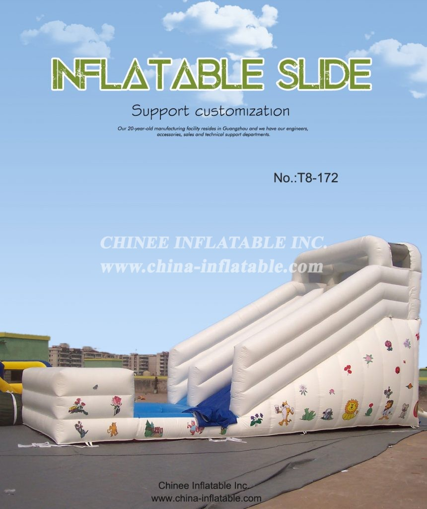 T8-172 - Chinee Inflatable Inc.
