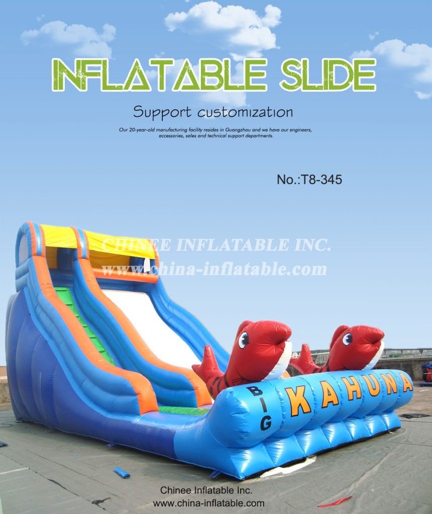 T8-345 - Chinee Inflatable Inc.