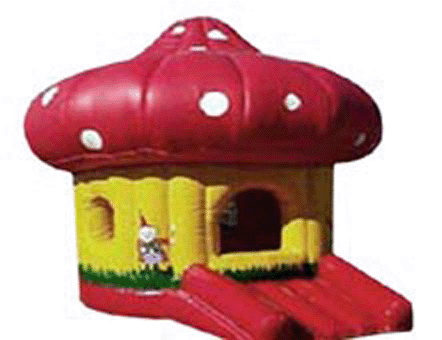 T1-151 inflatable bouncer
