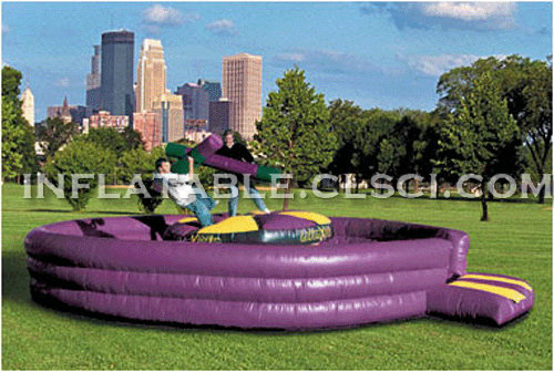 T11-107 Inflatable Sports
