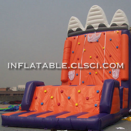 T11-1135 Inflatable Sports