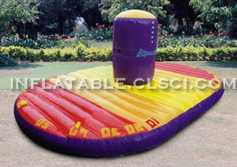 T11-139 Inflatable Sports