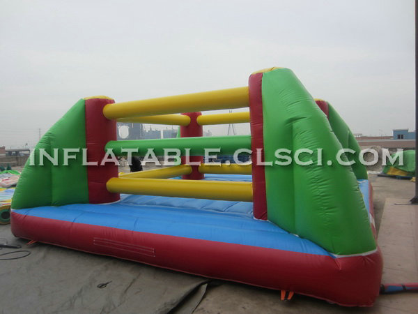 T11-147 Inflatable Sports