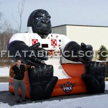 T11-356 Inflatable Sports
