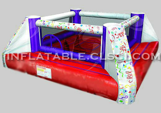T11-424 Inflatable Sports