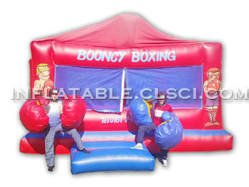 T11-441 Inflatable Sports