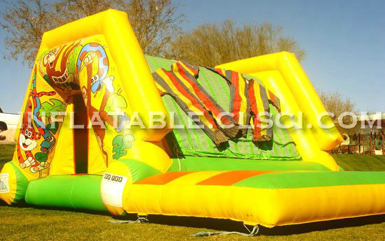 T11-580 Inflatable Sports