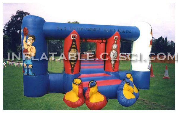 T11-628 Inflatable Sports