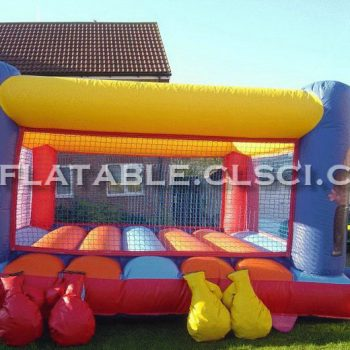 T11-655 Inflatable Sports
