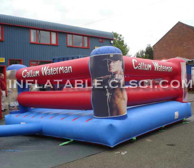 T11-684 Inflatable Sports