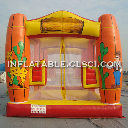 T11-927 Inflatable Sports