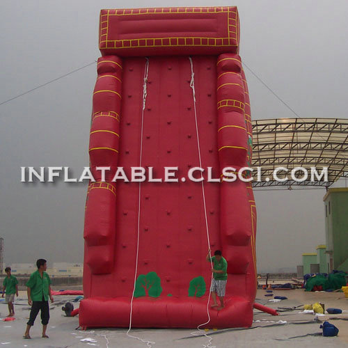 T11-991 Inflatable Sports