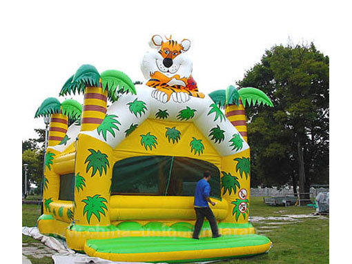 T2-1024 Inflatable Bouncer