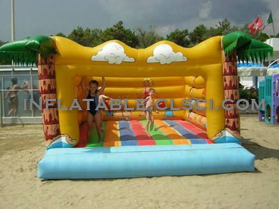 T2-1082 Inflatable Bouncer