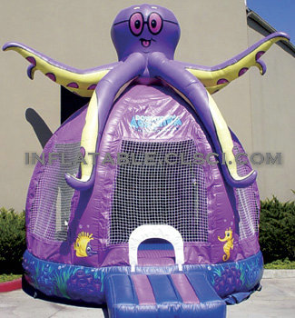 T2-1443 Inflatable Bouncer