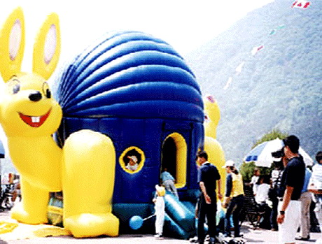 T2-186 inflatable bouncer