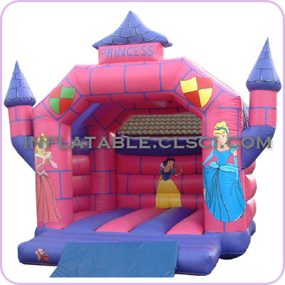 T2-1962 Inflatable Bouncer